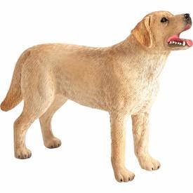 Animal Planet Labrador