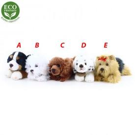 Rappa Plyšový pes ležící 17 cm ECO-FRIENDLY 1 ks -  A