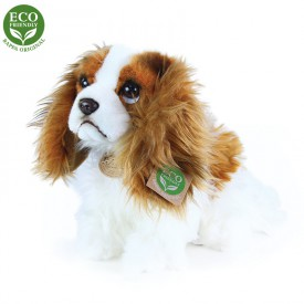 Rappa Plyšový pes king charles španěl 25 cm
