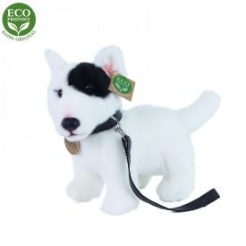 Rappa Plyšový pes anglický bulteriér s vodítkem stojící 23 cm ECO-FRIENDLY