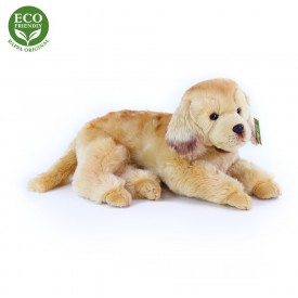 Rappa Plyšový pes zlatý retrívr ležící 32 cm ECO-FRIENDLY