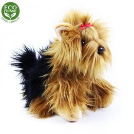 Rappa Plyšový pes jorkšír sedící 27 cm ECO-FRIENDLY