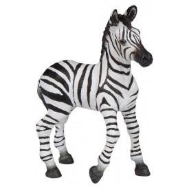 PAPO Zebra mládě