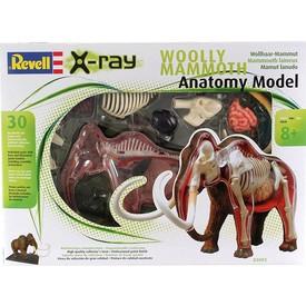Revell X-ray SnapKits 02092 Mamut