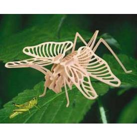 Dřevěné 3D puzzle dřevěná skládačka hmyz - Koník E027